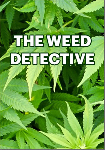 Casting The Weed Detective